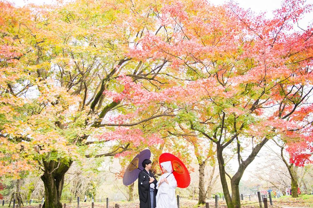 京都府立植物園での和装写真