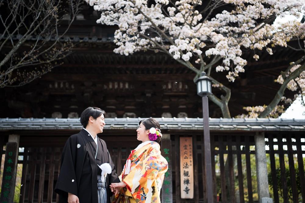 八坂の塔の桜と新郎新婦様