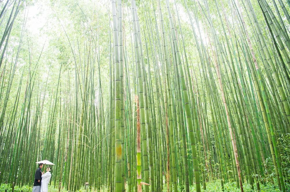 京都は嵐山でのロケーション撮影
