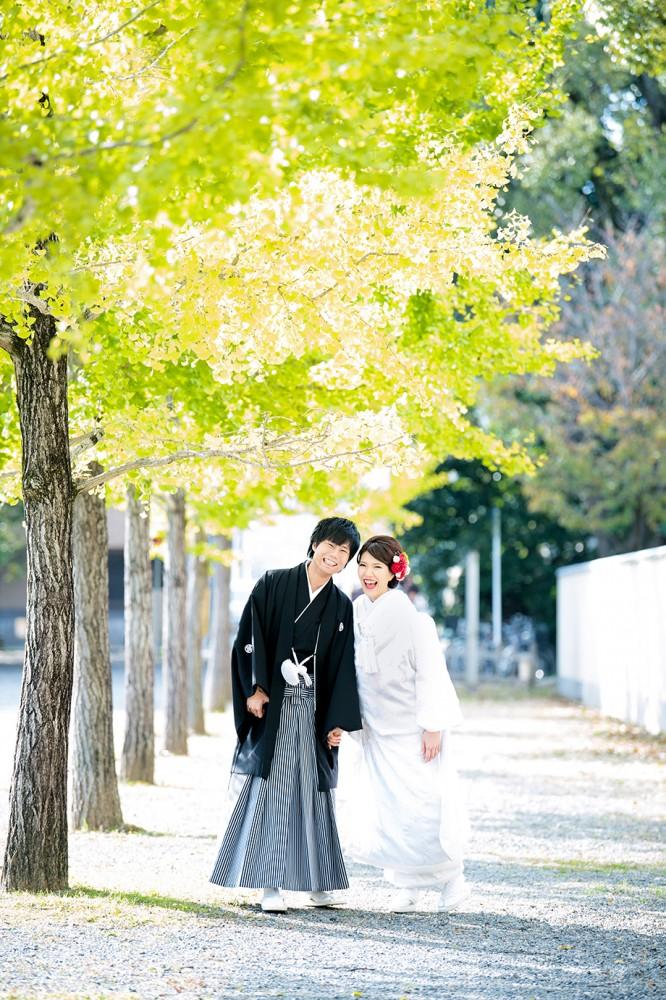 色づき始めた銀杏の木と和装の新郎新婦