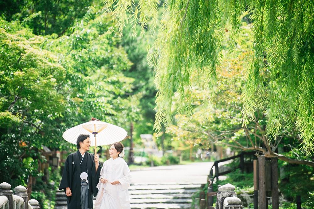 柳しだれる京都は東山での和装の撮影