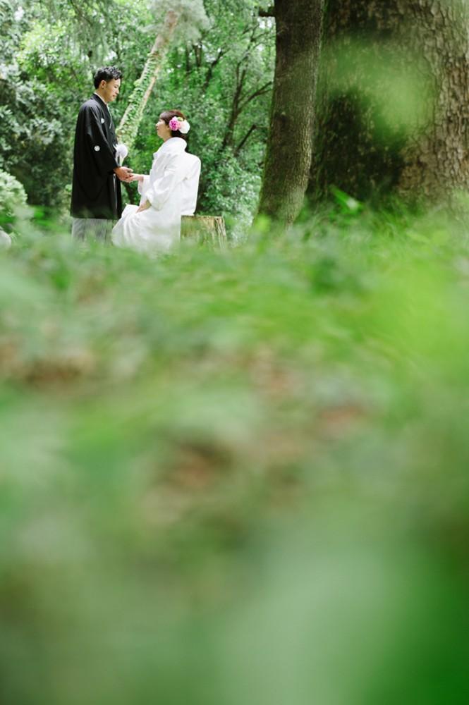新緑の森で手つなぎショット