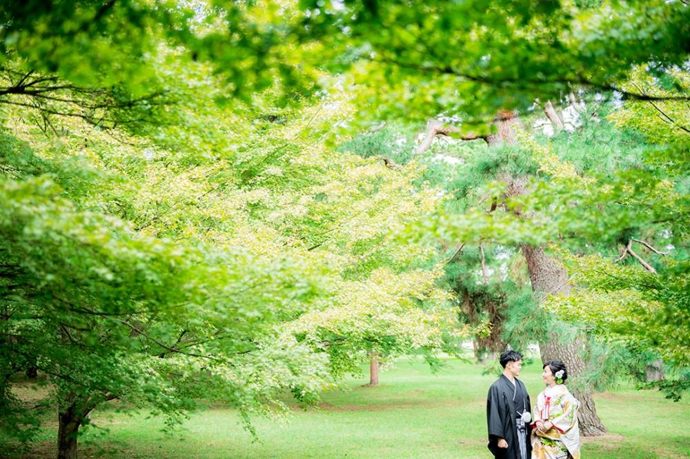京都御所での緑とのお写真