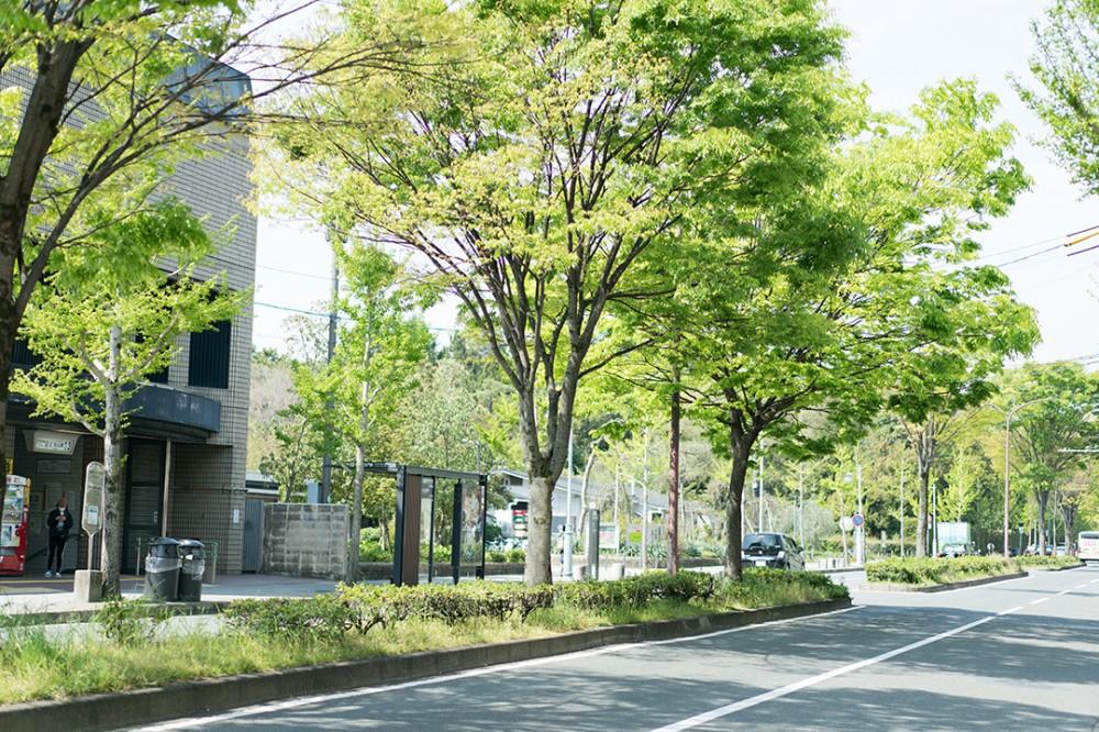 京都府立植物園の外