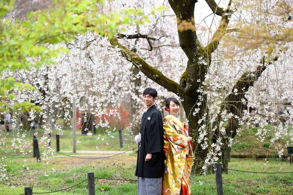 植物園の桜とともに撮影