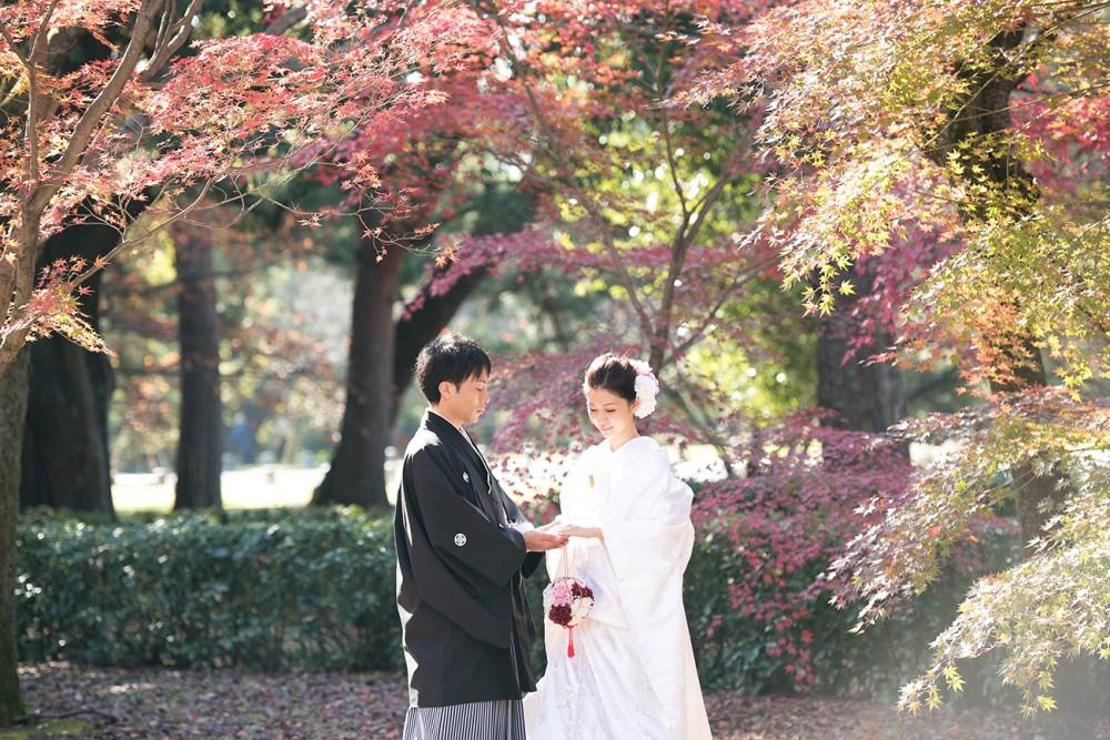 京都御苑の秋、白無垢にて