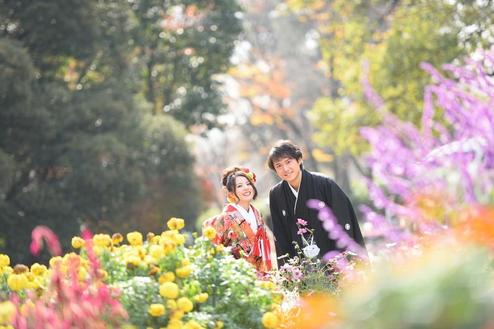 京都府立植物園にて、和装前撮り
