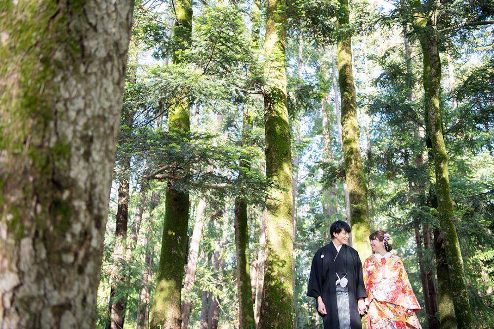 和装も似合う京都の森